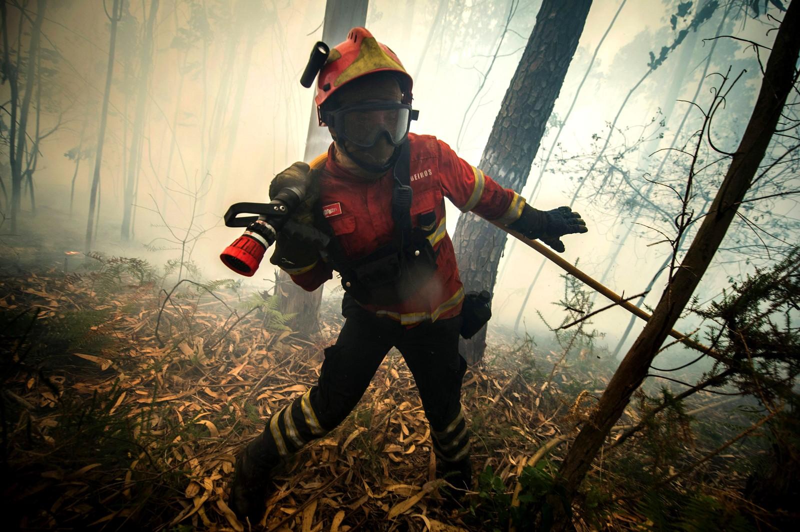 """En brannmann sloss mot naturen og flammene i Bustelo nord i Portugal. Meteorologer advarte om at det var """"veldig stor til maksimum"""" skogbrannfare i hele den nordlige delen av landet. Skogbrannene begynte fredag og økte i styrke hele tiden. Den 8. august kjempet mer enn 3.000 brannfolk mot 160 branner."""