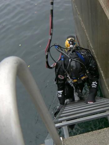Diving in Laksevåg