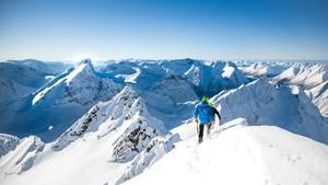 Ut i naturen: Sunnmøres alpine arv