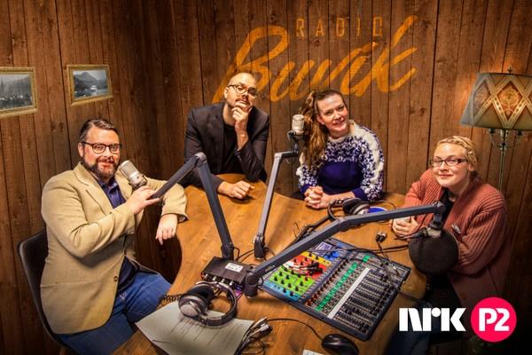 Radio Buvik