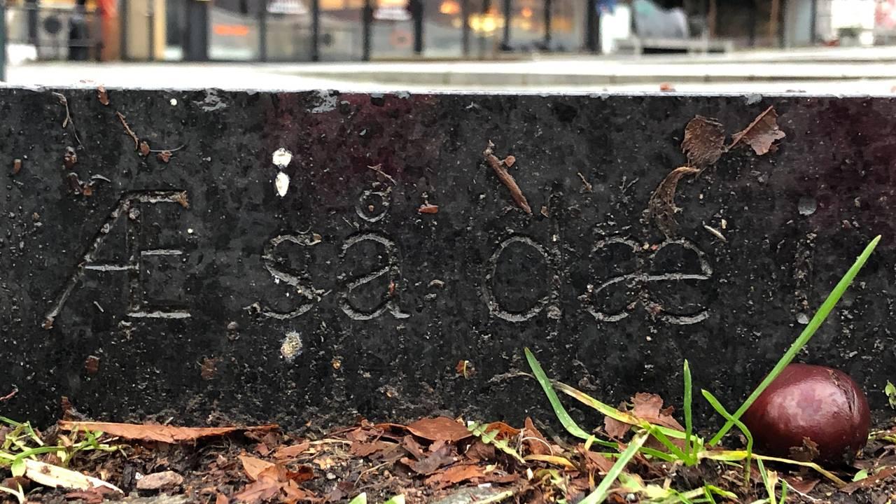 Æ så dæ, sitat fra sangen Sommerfuggel i vinterland på en fontene av kunstner Nabil Mansor.