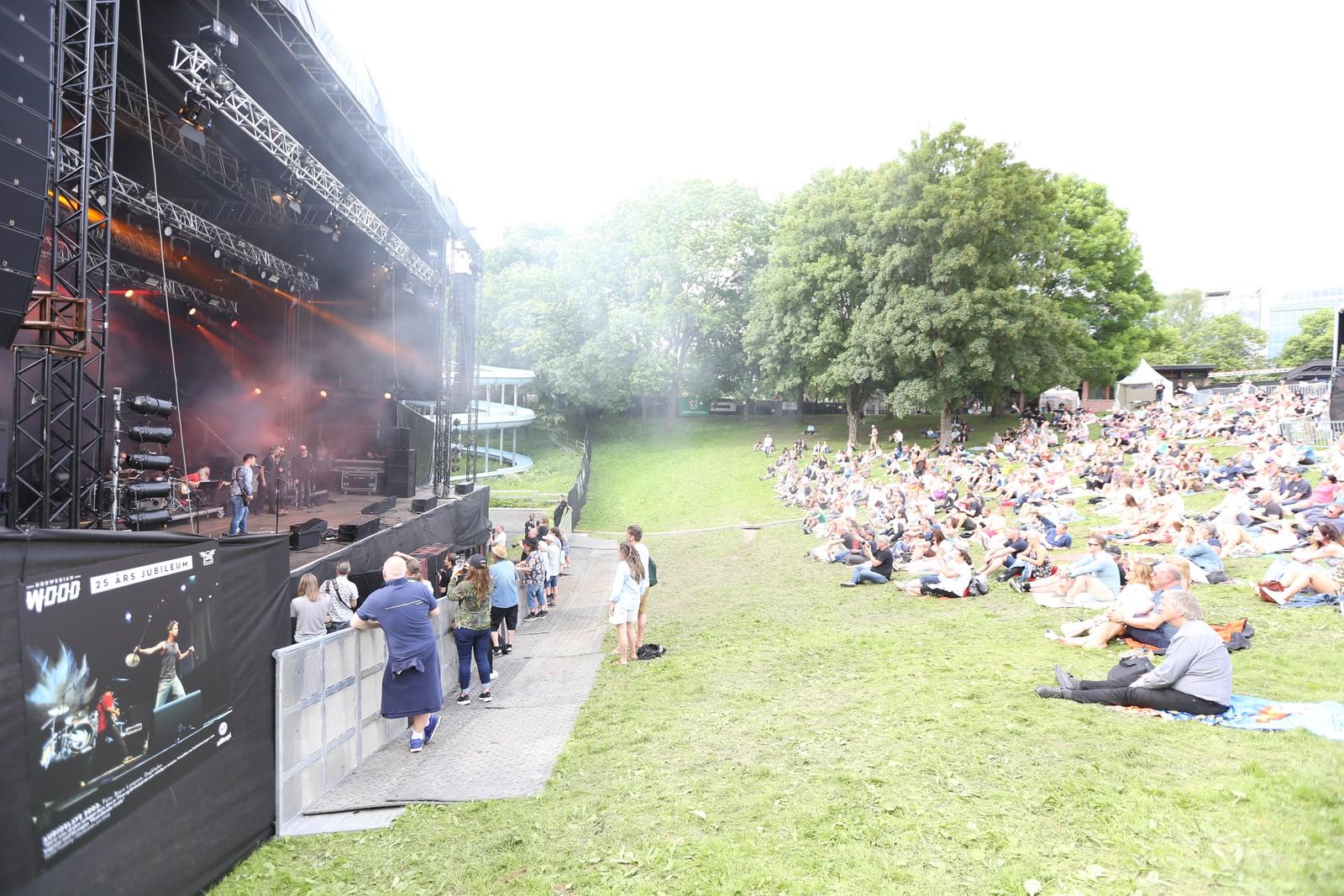 Norwegian Wood er tilbake i Frognerbardet. I år er det 25-årsjubileum og det er berre norske artistar som står på scenen under festivalen.