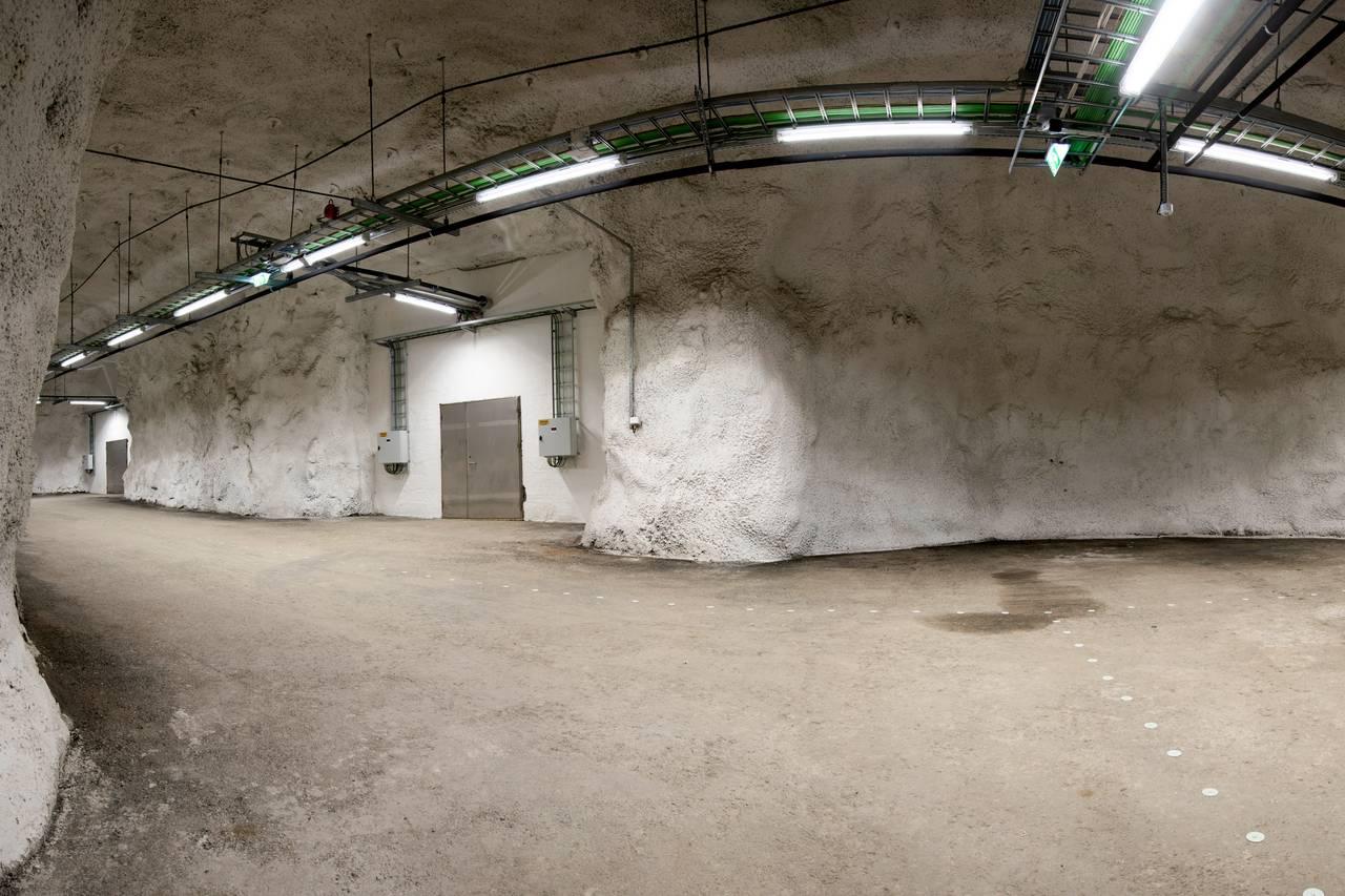 Hallen med dører inn til frølagrene.