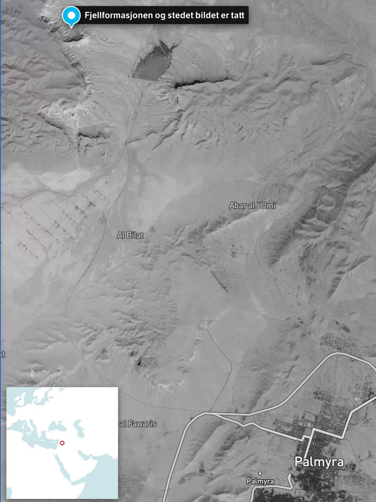 Kart over Palmyra
