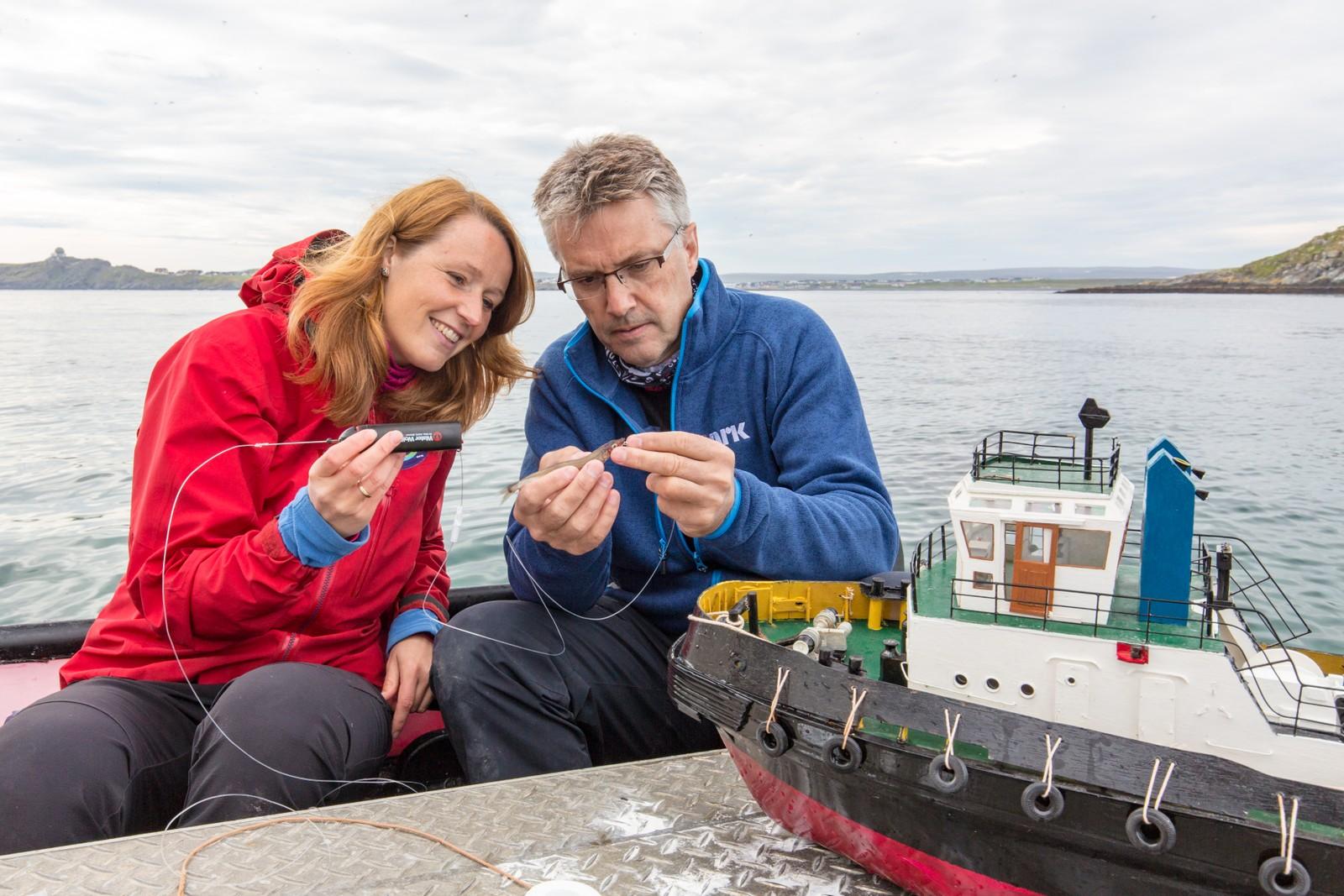 Noen ekstra spesielle kameraeksperimenter har det også blitt: her tester Ingrid Langeland Olderbakk og Nils Arne Sæbø en måte å få filmet lomvi som fanger fisk under vann.