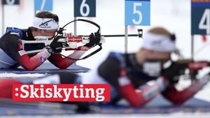 V-cup skiskyting: Stafett, menn