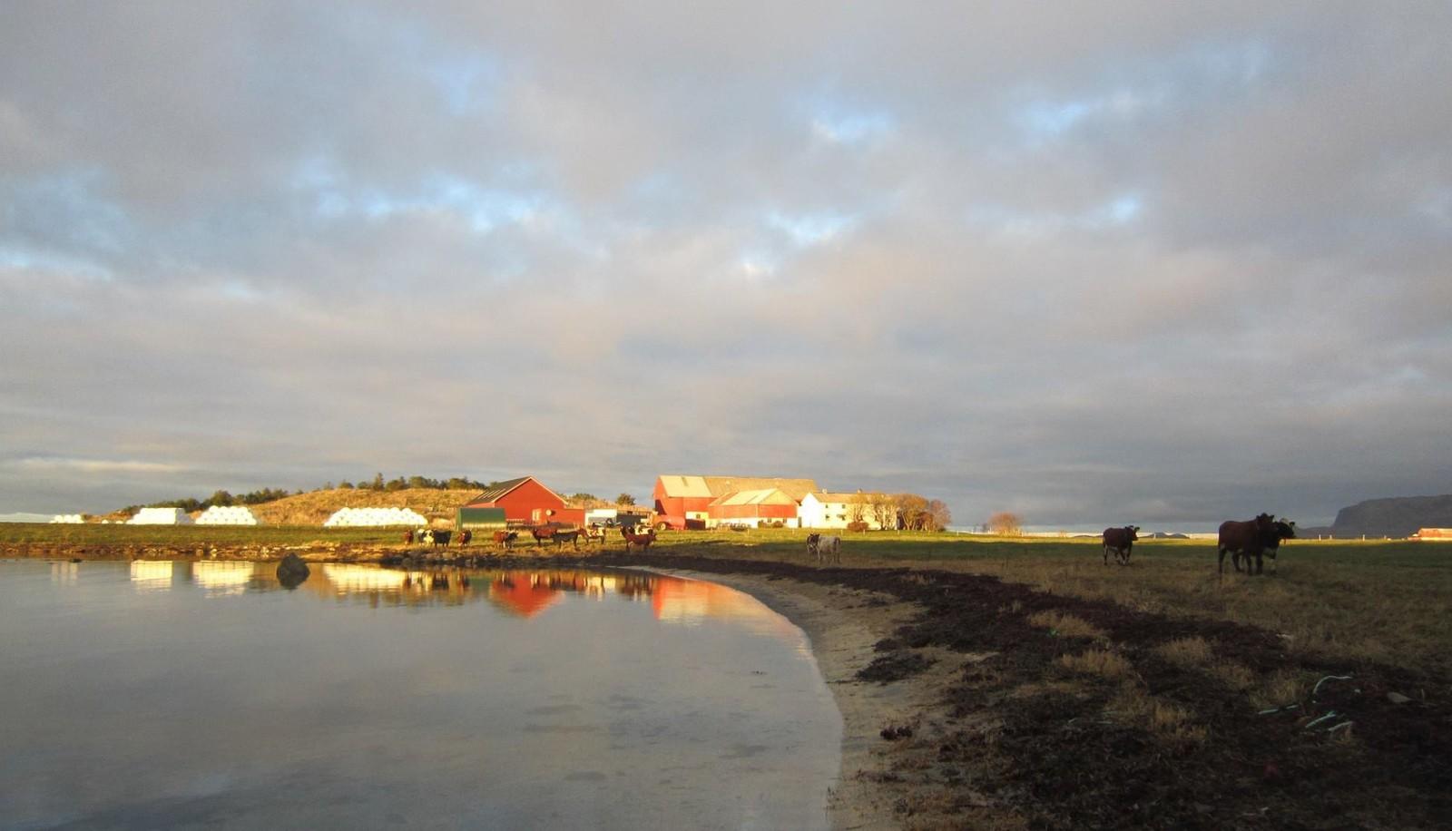 Novembersol over Hoøya på Uthaug