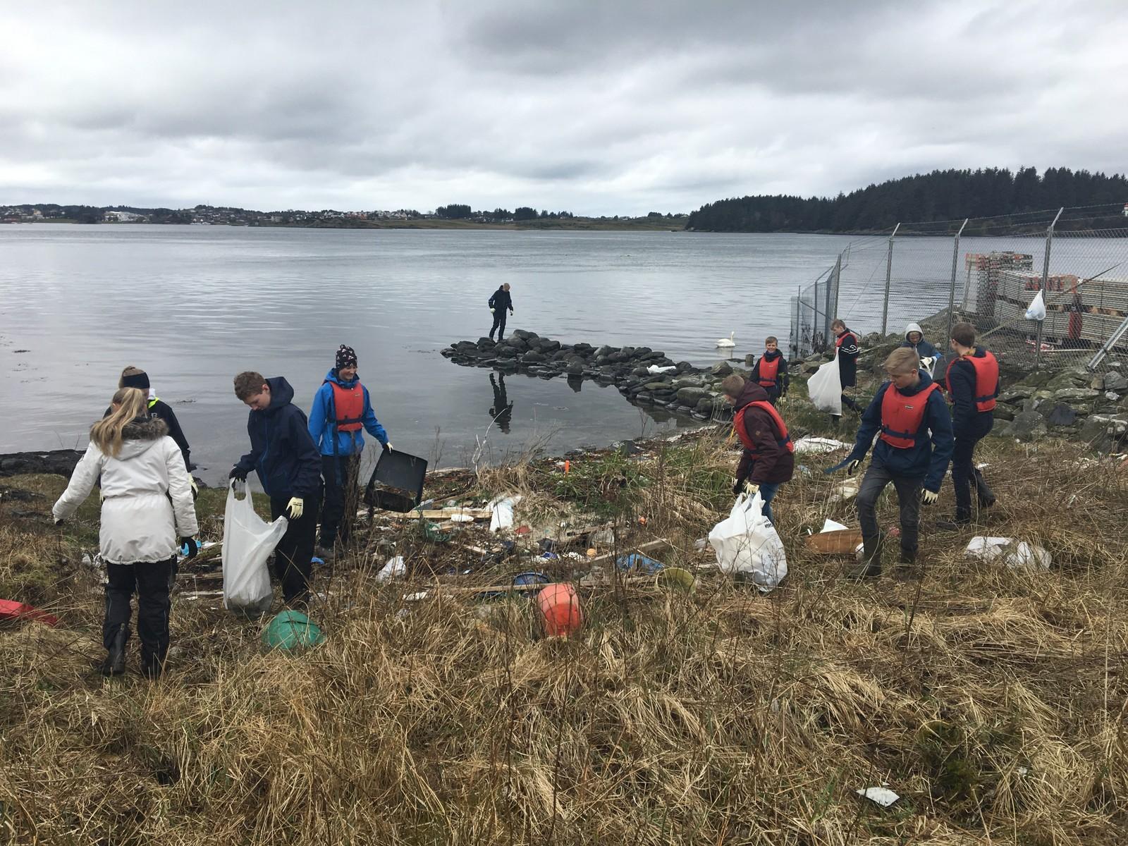 9. klassingener på Vormedal skole har natur, miljø og friluftsliv som valgfag, og er ute i naturen hver torsdag. Torsdag plukka de søppel rett nord for FMC.