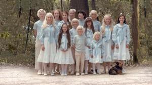 Dokusommer: The Family
