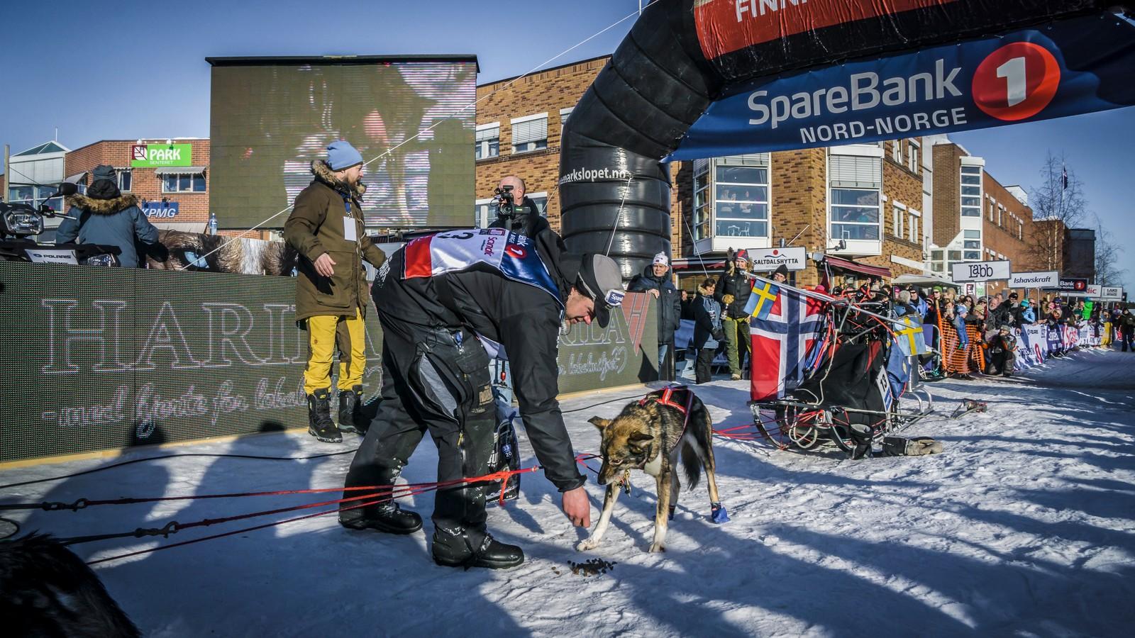 Det første Karlsson ville gjøre etter målgang, var å gi hundene en liten matbit.