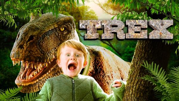 Simon er seks år og har et husdyr som er litt annerledes. I garasjen til Simon bor nemlig en Tyrannosaurus Rex som heter Trex.Svensk drama.