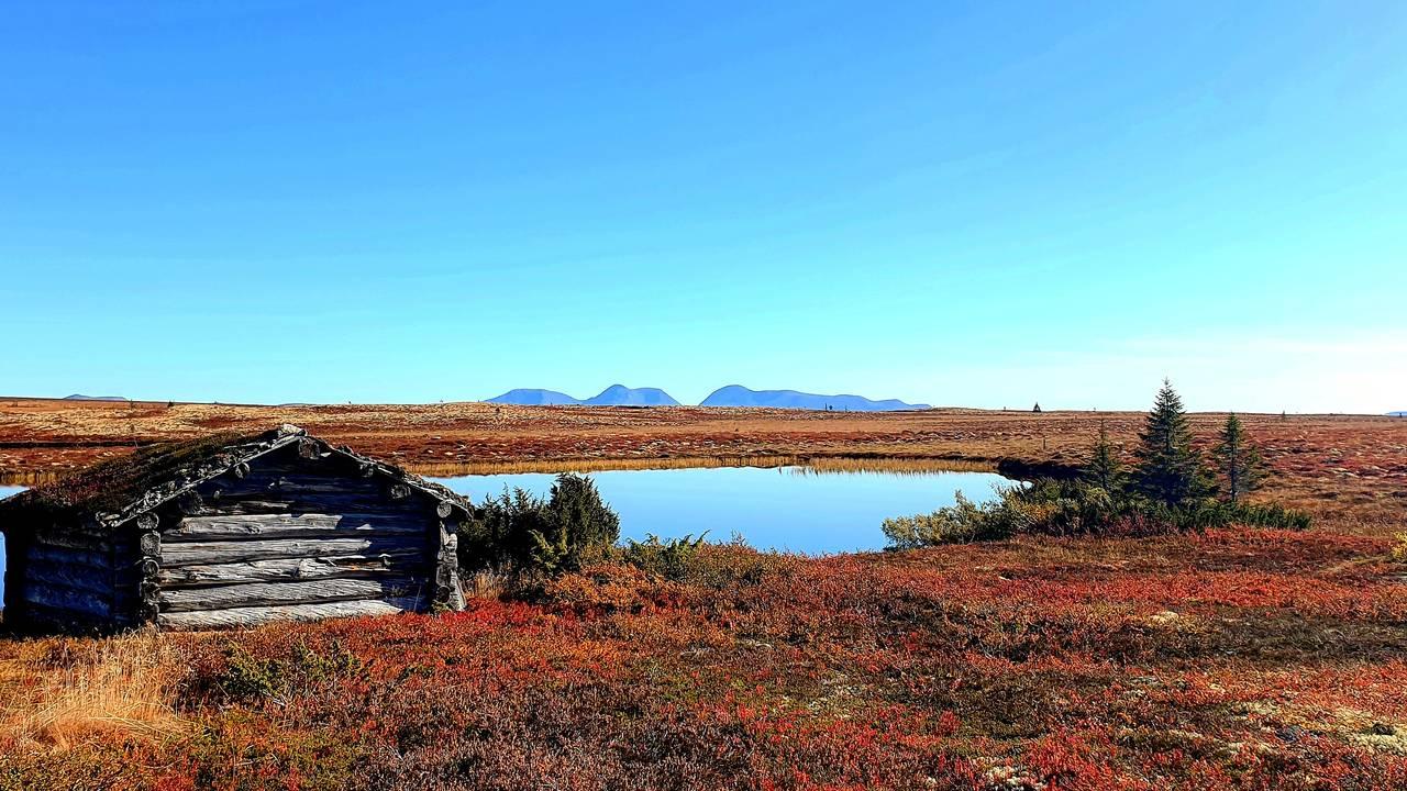 Fonnåsfjellet, Rendalen, Bente Aasbrenn