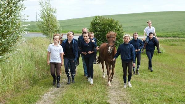 Svensk realityserie. Åtte barn mellom 11 og 14 år tillbringer to uker på rideleir der de får hjelp med ulike problemer de har med ponniene sine.