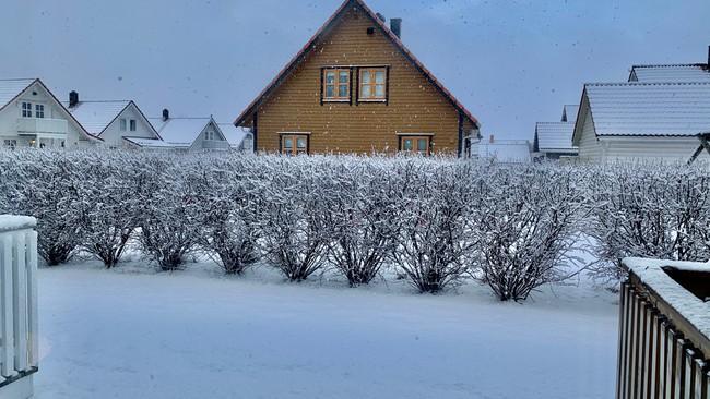 Utsikt til Daniel Bjarmann-Simonsens hage i Bodø.
