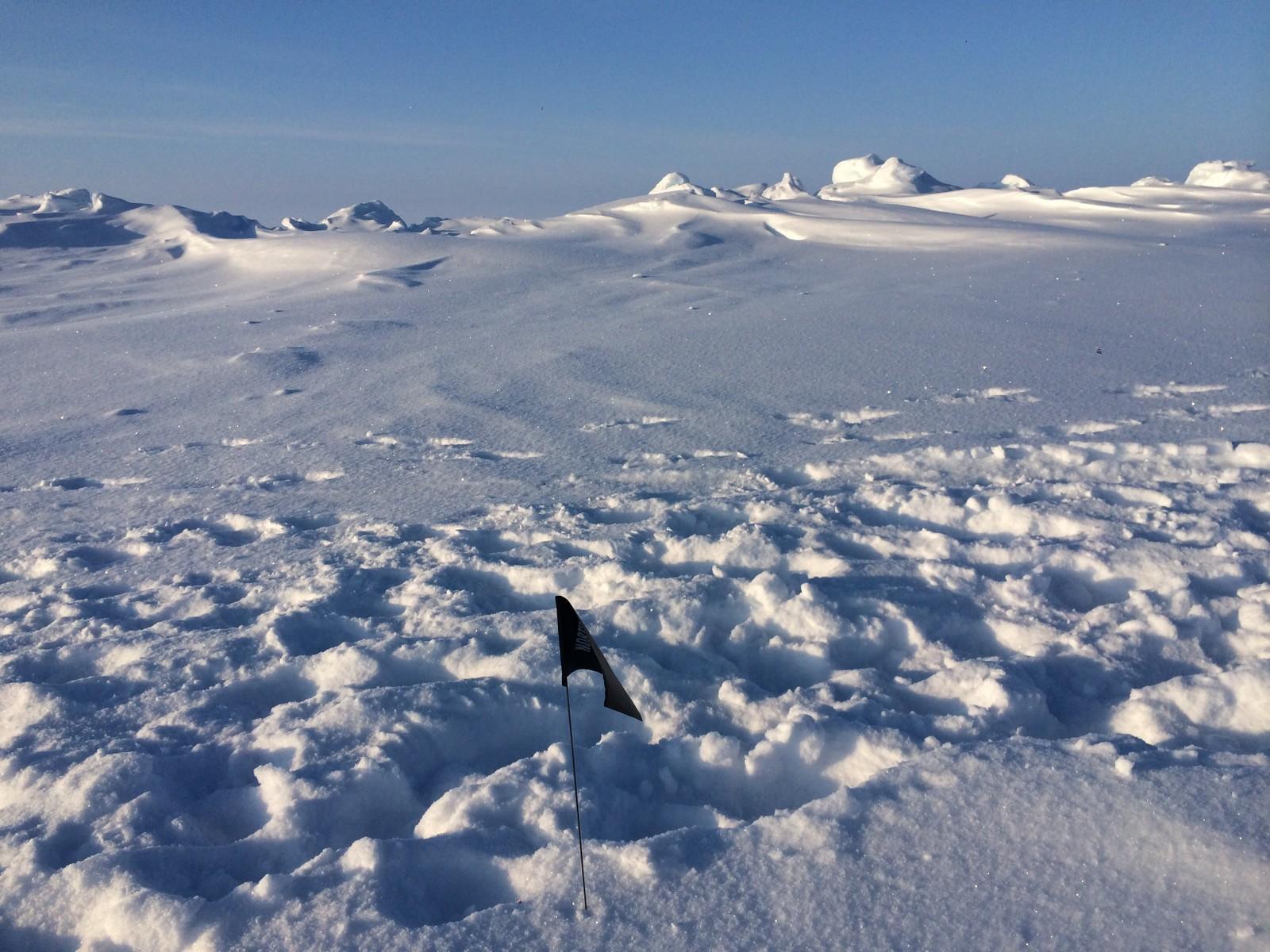 Lise forteller at det er umulig å holde maraton på den ekstakte geografiske Nordpolen fordi det er på drivis. Men dette bildet er tatt på den geografiske Nordpolen.