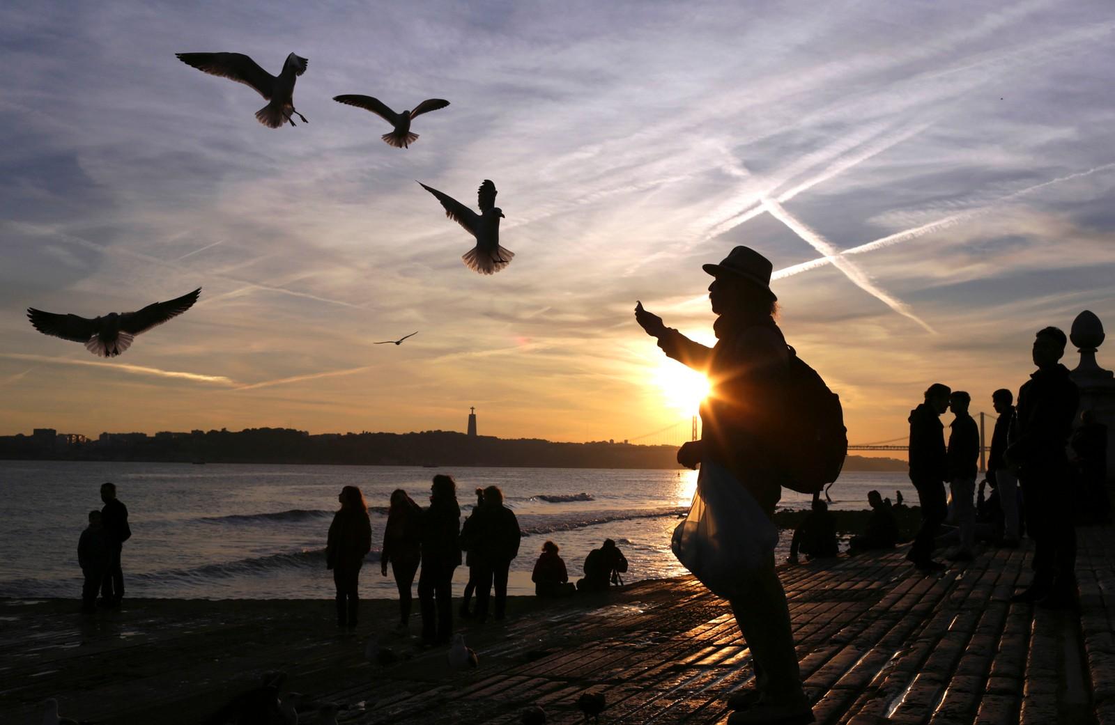 En mann mater måker i Lisboa i Portugal.