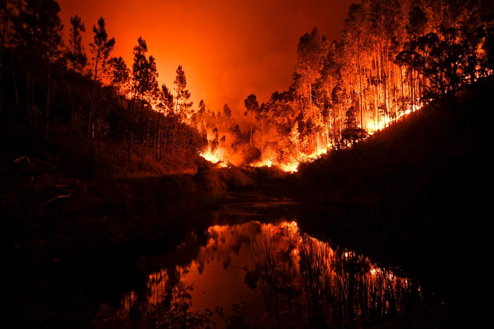 Et stort område som brenner ved Penela i sentrale Portugal.
