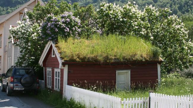 På Lærdalsøyri er mange store og fine hus verna, men også husa til småkårsfolket finn vi døme på. Dette er Rauastova i Øyragata. Foto: Kjell Arvid Stølen, NRK.