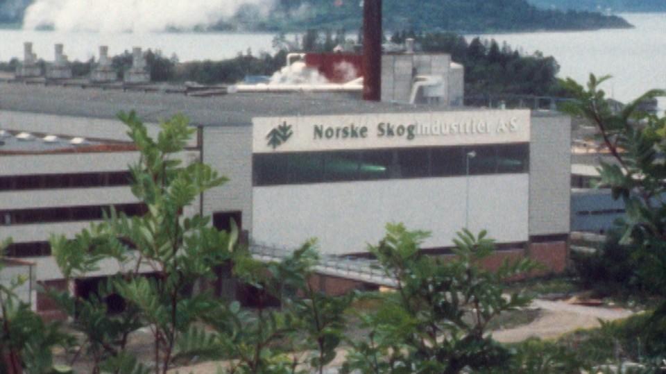 Skogbruk - skogsindustri