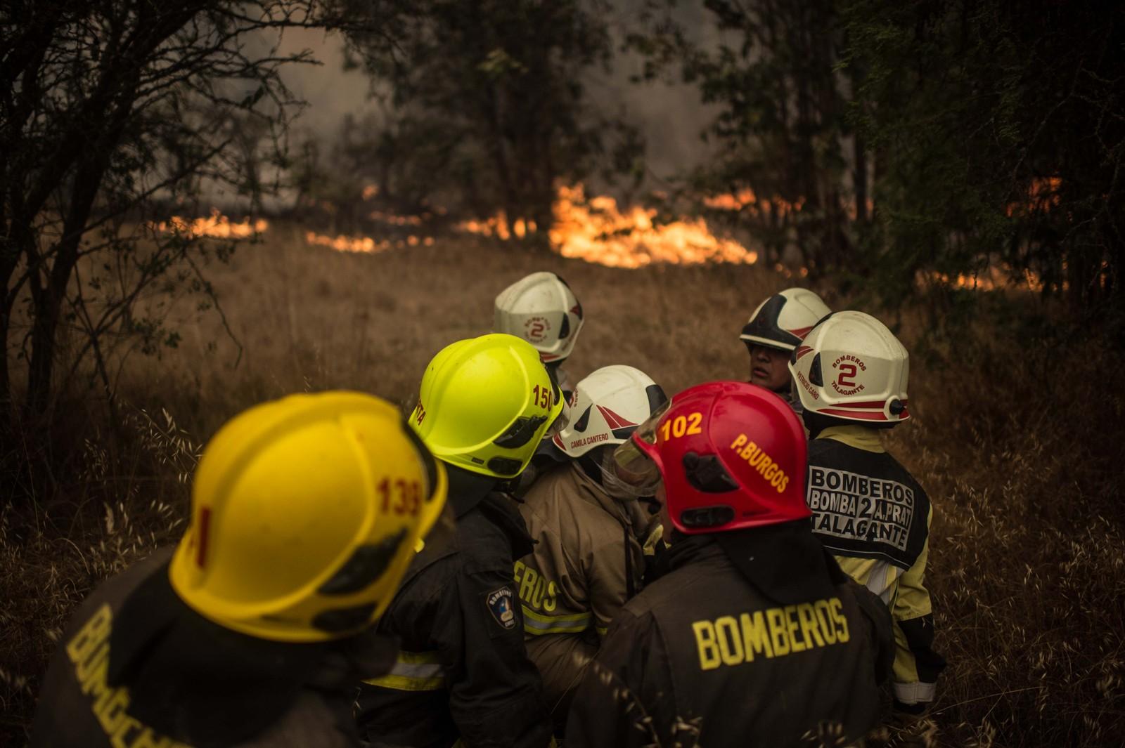 Brannen har ødelagt mer enn 35.000 hektar med skog.