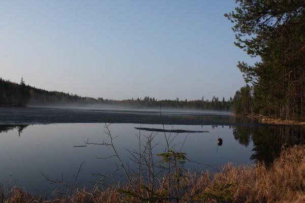 Igletjennet en tidlig morgen i april. -  Foto: Knut Lysell