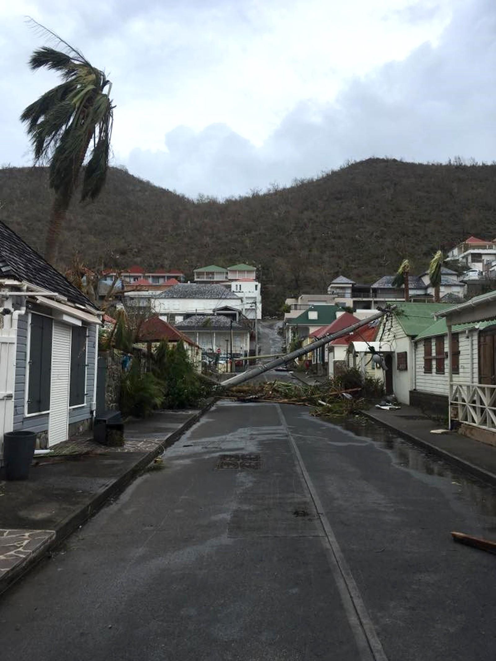 Trær ligger blåst overende i Gustavia på Saint-Barthelemy.