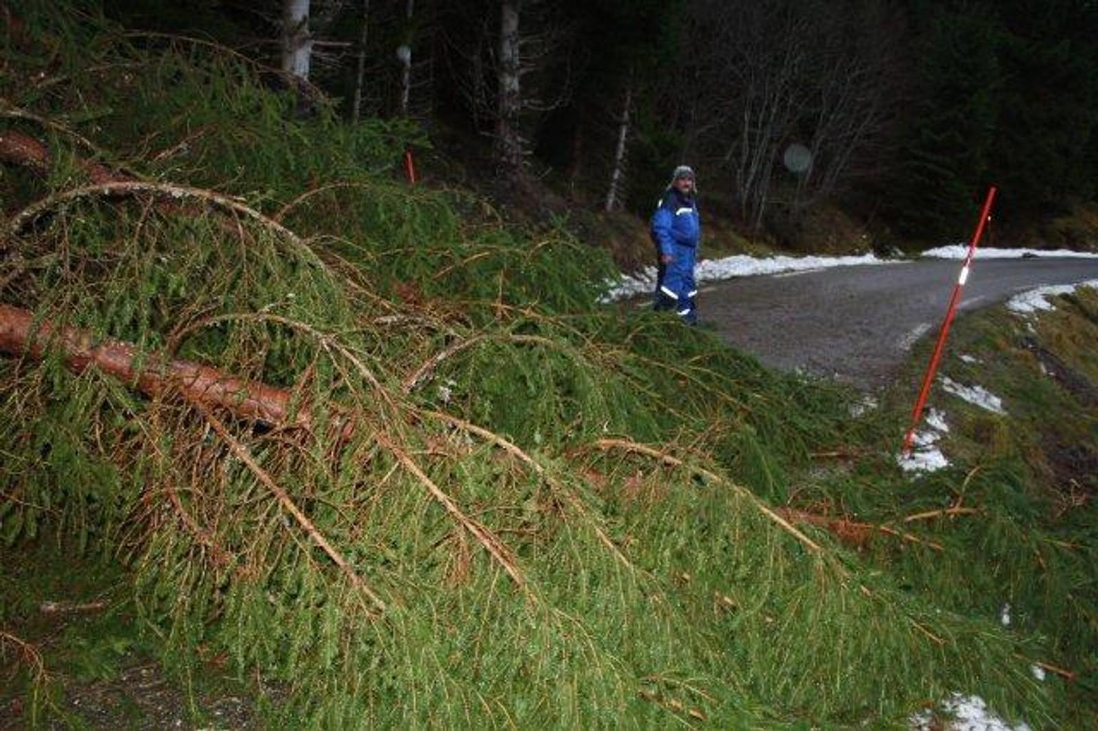 Vegen var stengd då familien ville opp for å sjå til mora på Helset.