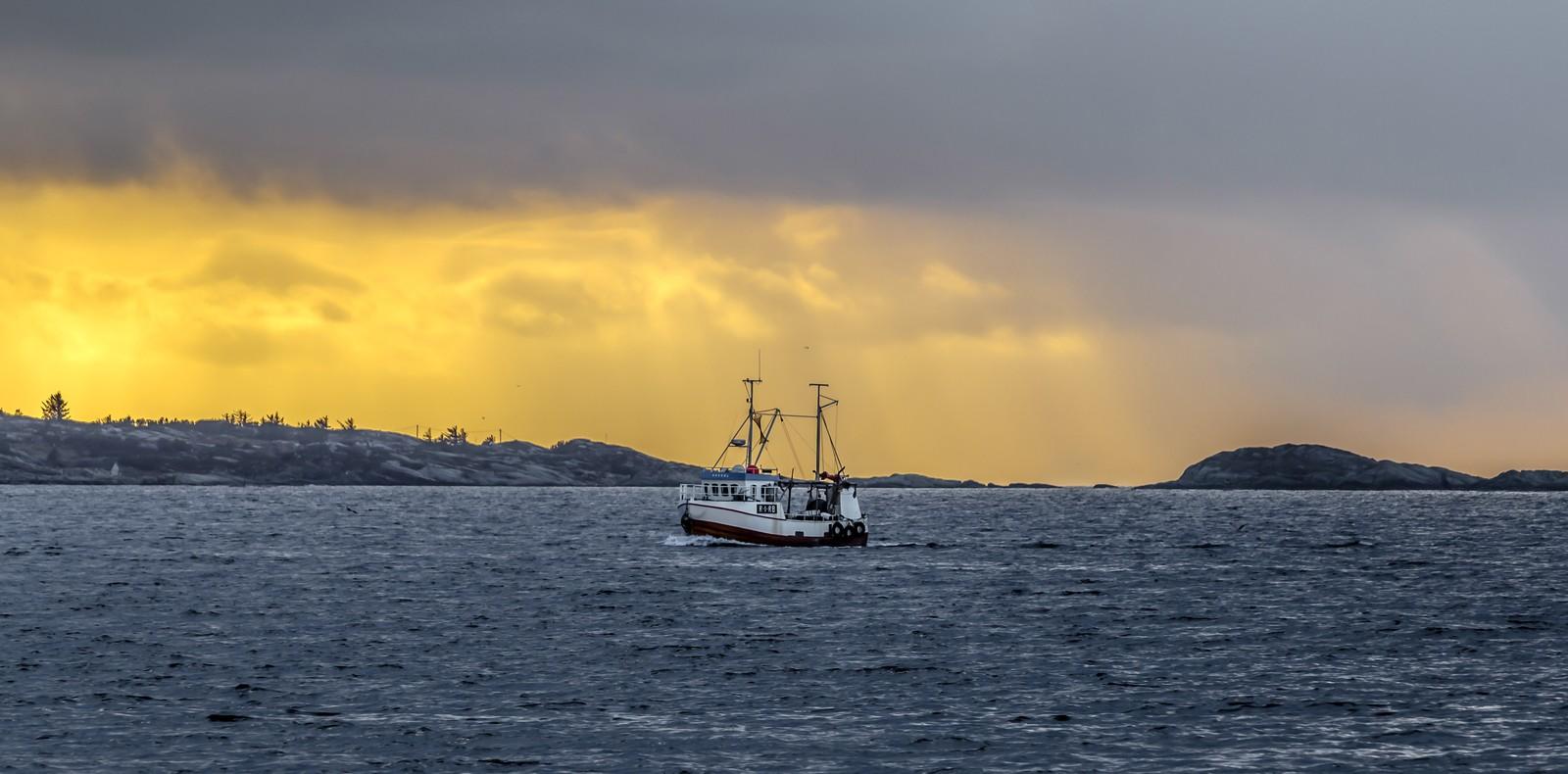 Fiskebåten Havsol på vei inn mot Viste i Randaberg.