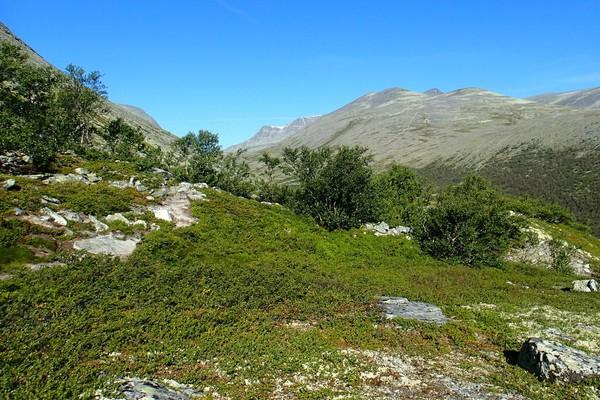 "Stien opp til Høgronden, med toppen såvidt synlig mellom ""kamelpuklene"" i det fjerne -  Foto: Frederik Emil Juul"