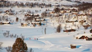 Rauland i Vinje kommune