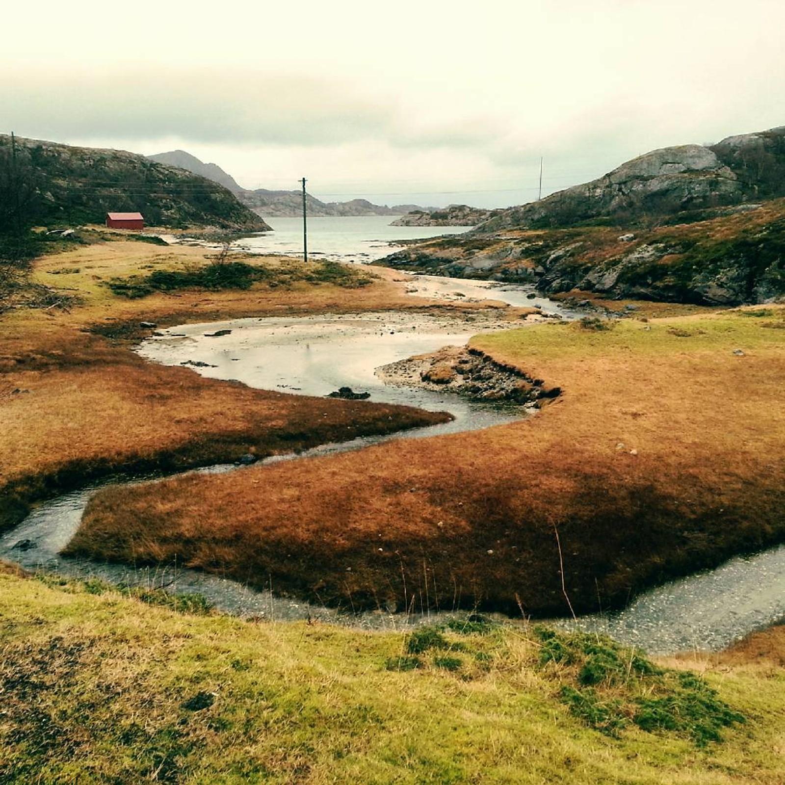 Bar mark på Gjerøya sundag føremiddag.