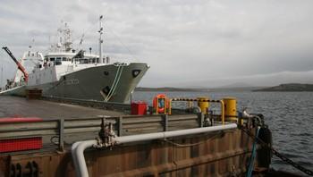 Fiskebåt ved havnen i Stanley, Falklandsøyene
