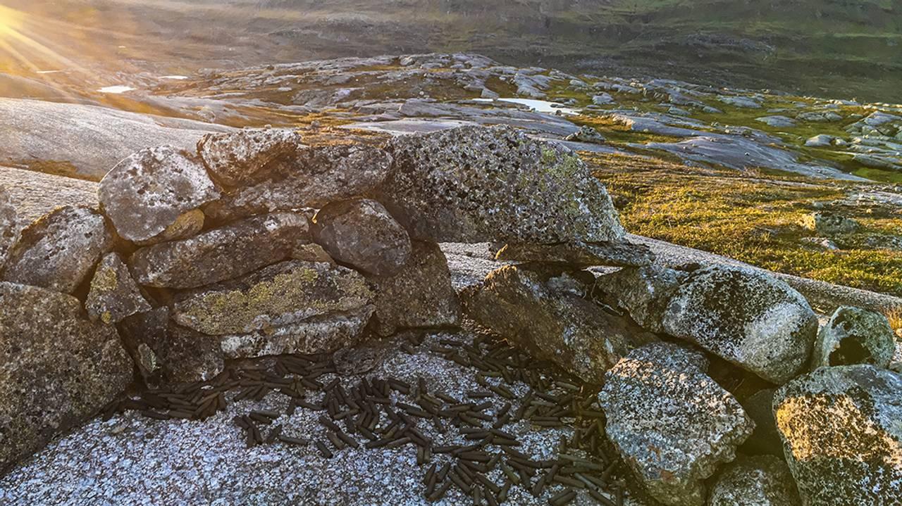 Narvikfjellene