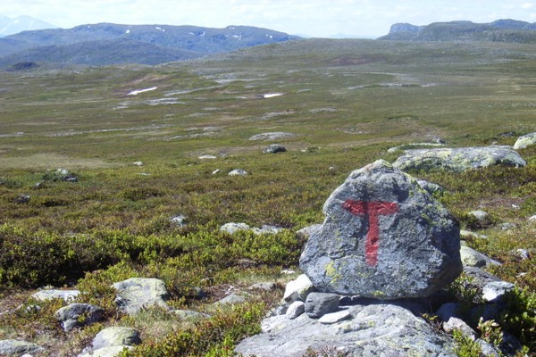 Mellom Svukuriset og Valldal - Foto: Torfinn Evensen