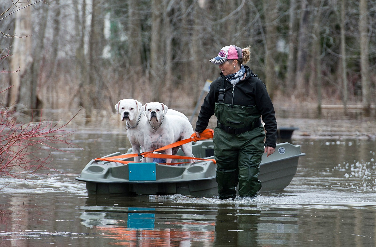 Hillary Porter går tur med hundene utenfor Montreal, Canada. Området er for tida ramma av flom.