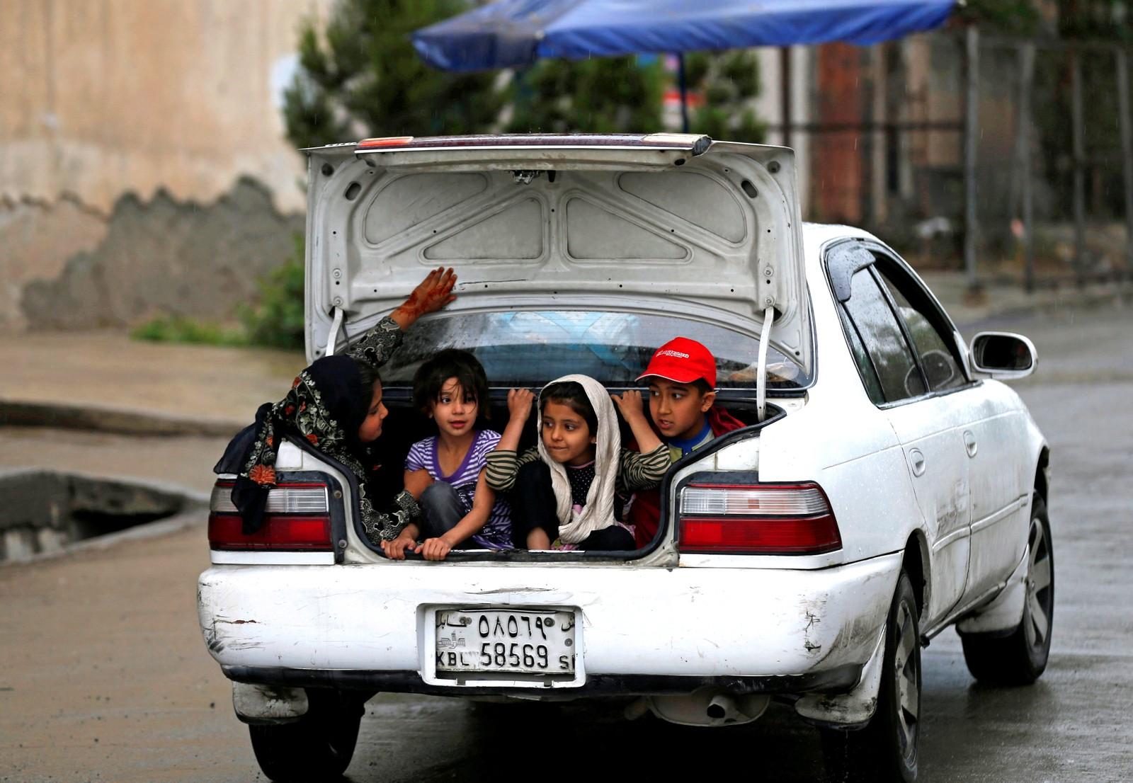 Dyrebar last i Kabul i Afghanistan.