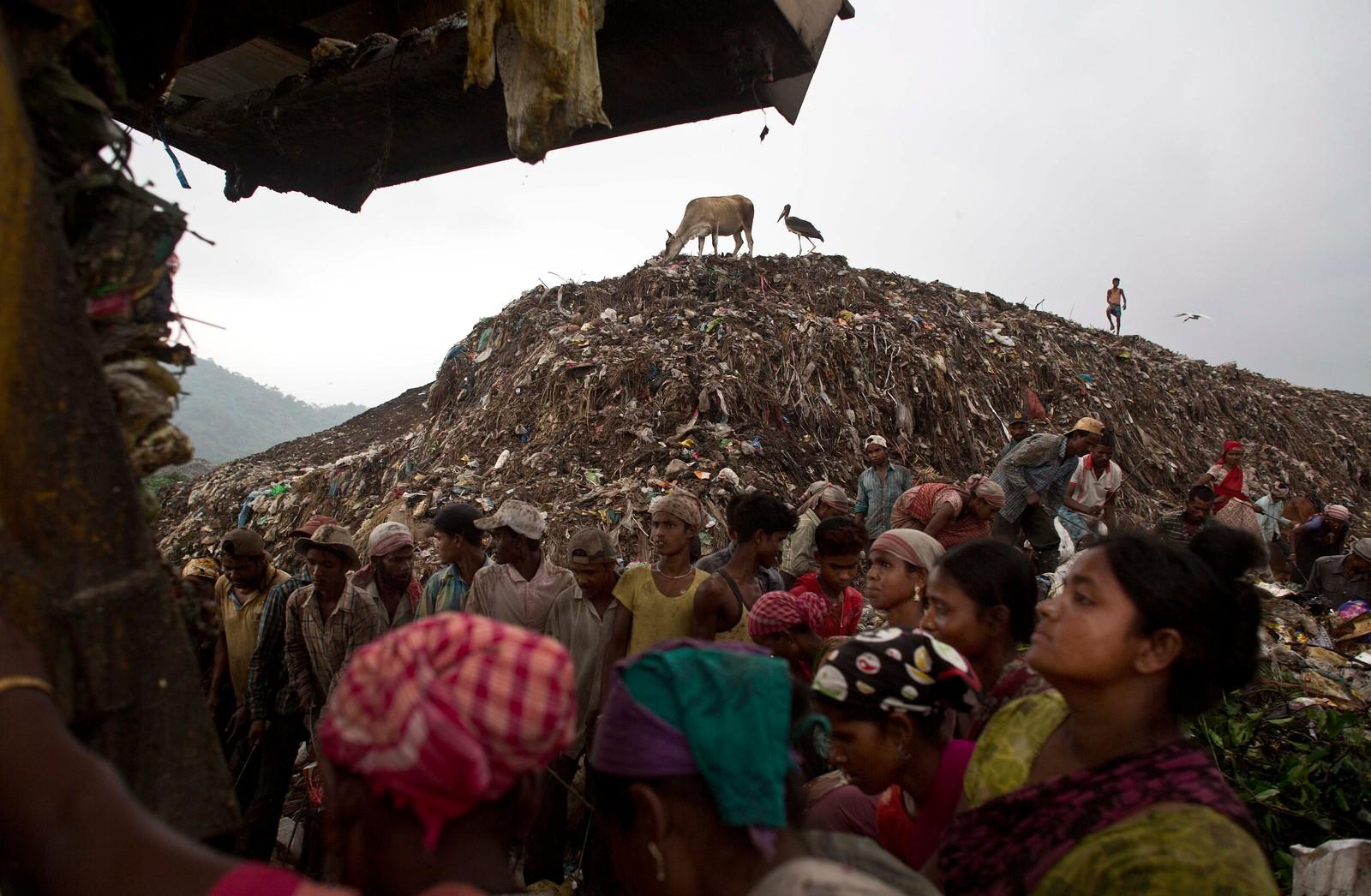 De venter på at søppelbilen skal tømme sin last, og kanskje levere noe som kan resirkuleres og selges.