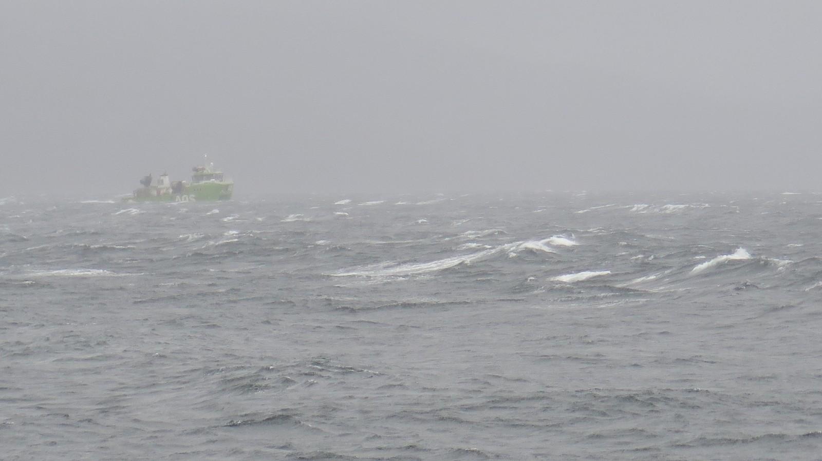 Her fra Alstenfjorden på Helgeland.