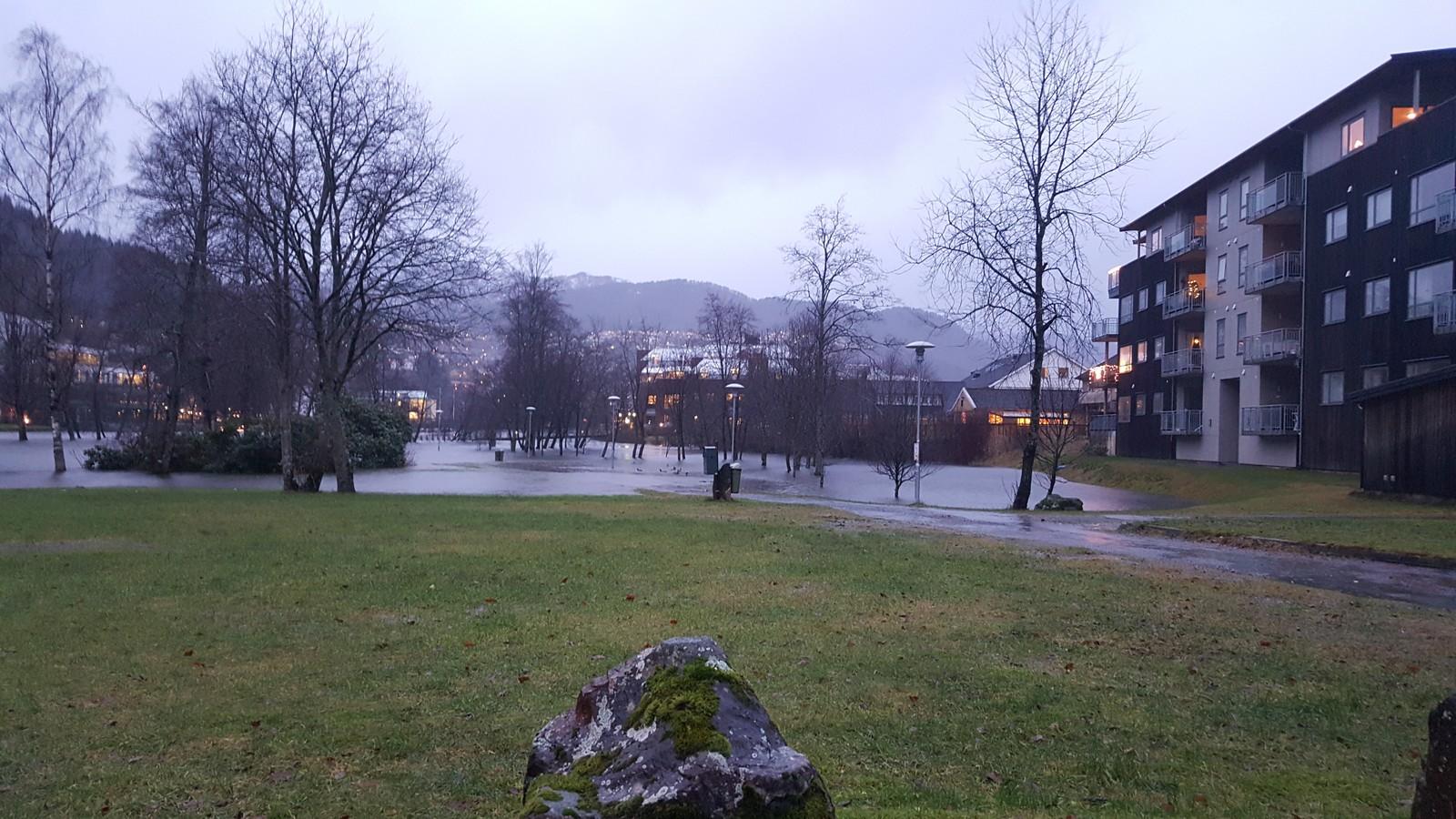 Nynorskens skog i Førde står delvis under vatn på grunn av mykje nedbør.
