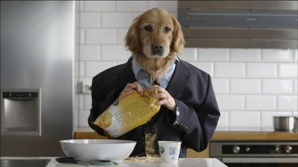 Norsk serie.  Pappa er en hund - er det så farlig da?