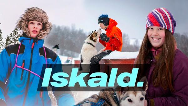 Tre tenåringer har tre måneder på seg til å forberede seg til Finnmarksløpet - et av Europas hardeste hundeløp.
