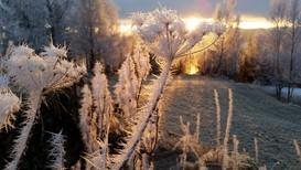 VAKKERT SKUE: Vanndamp blir til vakre iskrystaller når det fryser til. Slik så det ut i Mosvika i Trøndelag nylig.