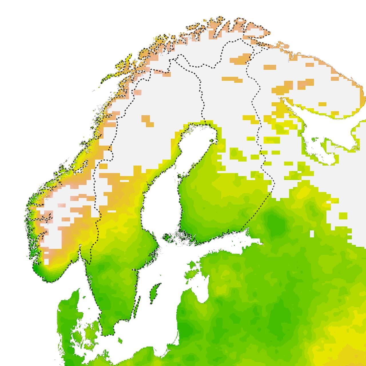 Klimamessige optimale forhold for flått årene 1995-2015 i Norge. Kartet er utarbeidet av Solveig Jore, Folkehelseinstituttet og Christian Wilhelm Mohr ved Norsk Institutt for Bioøkonomi.