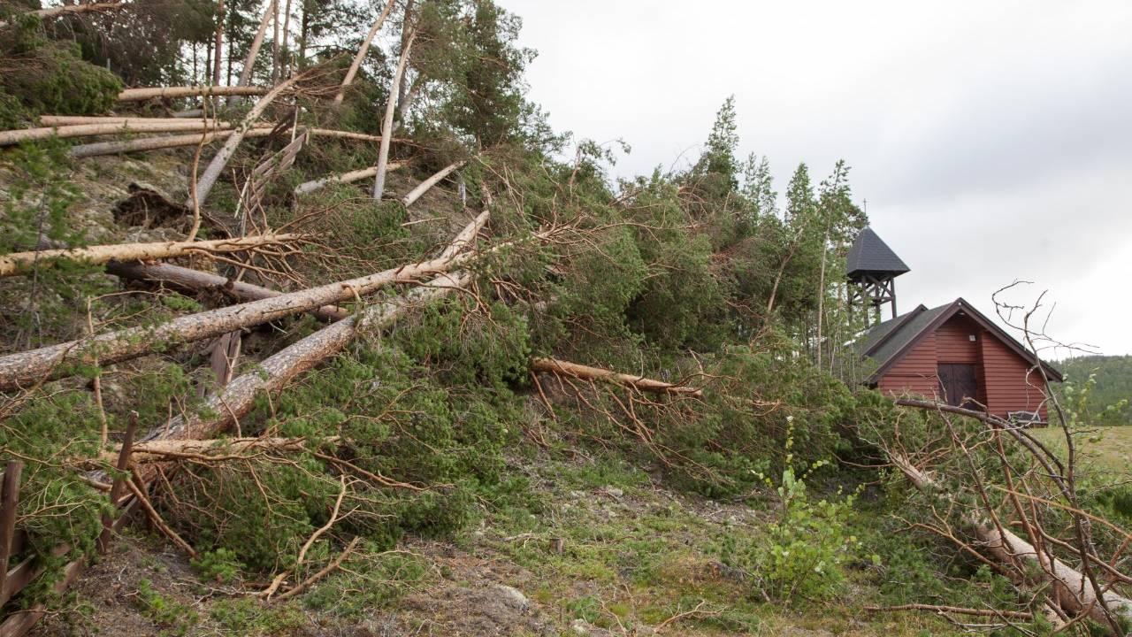Storm i Nord-Østerdal