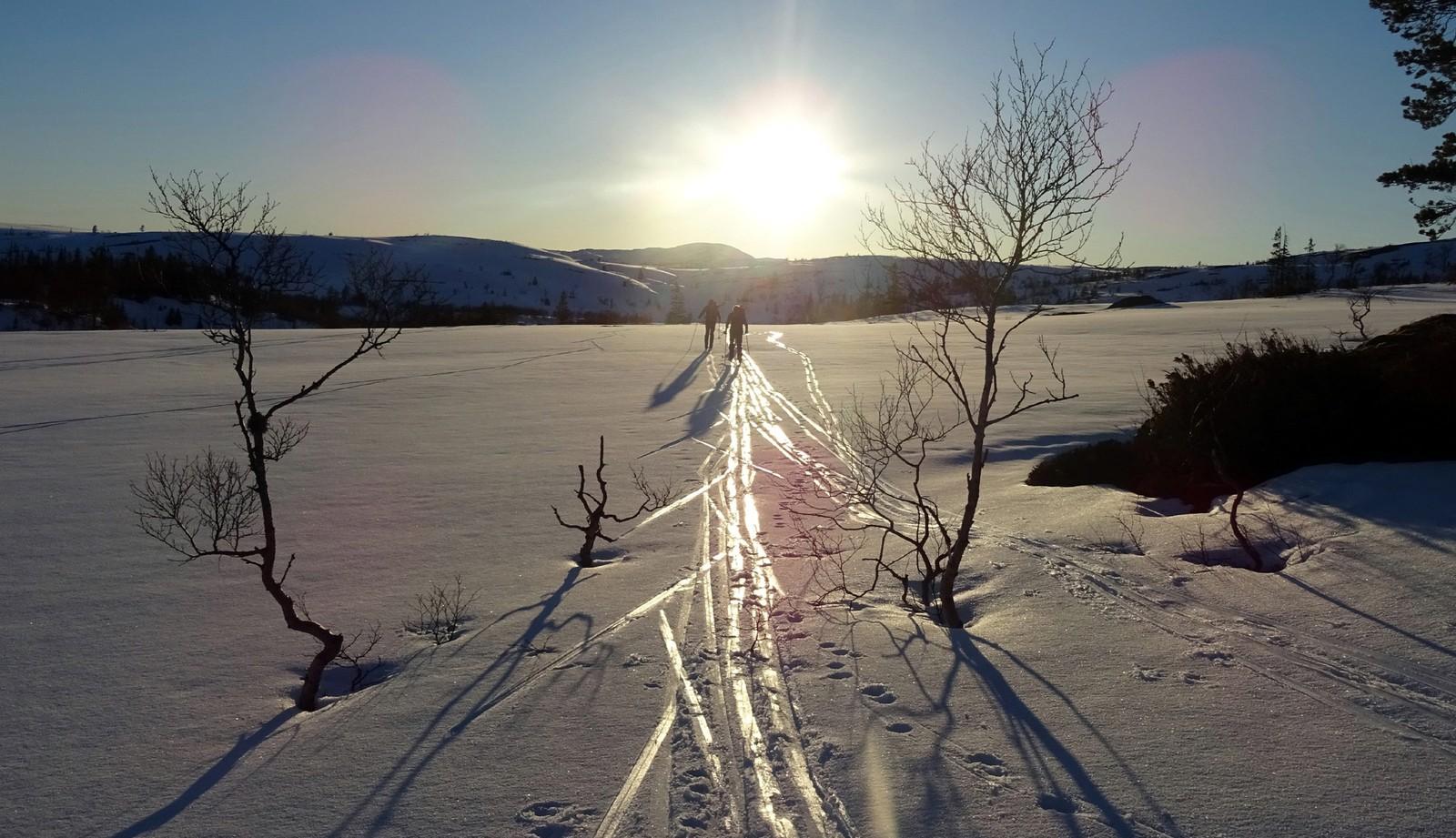 På vei hjem - Vulusjøen, Levanger