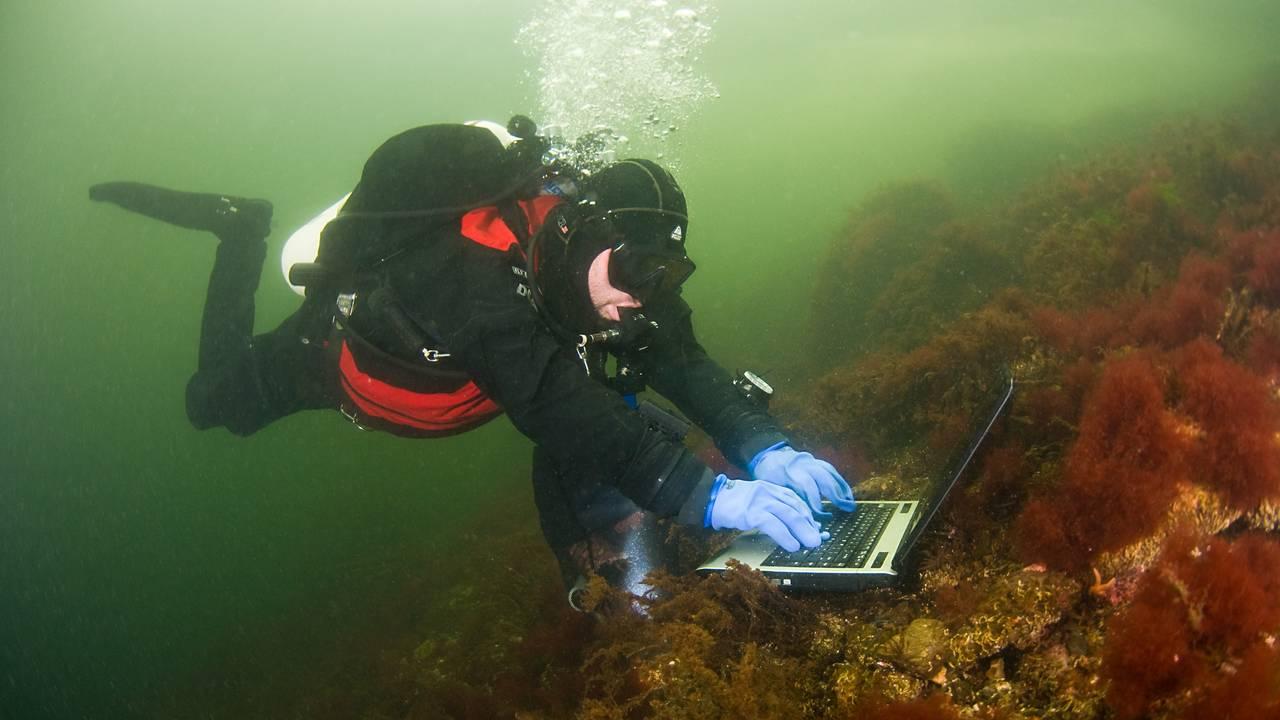 En dykker skriver på tastaturet til en laptop på bunnen av Oslofjorden
