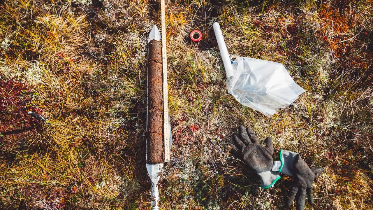 Vi ser en lang pølse av torv som ligger i boret som er brukt for å hente ut prøven. Ved siden av ligger det teip, gladpack, arbeidshansker og en plastpose.
