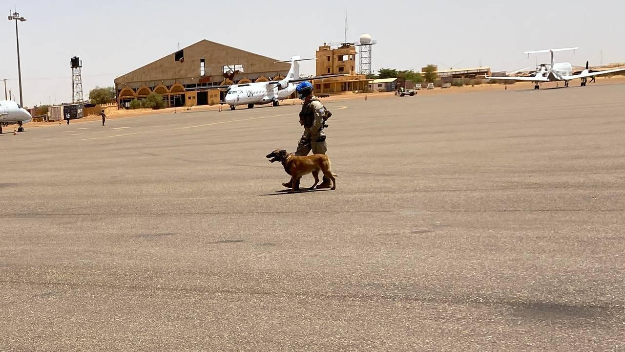 Den norske hundepatruljen på vei til å sjekke last i en av hangarene.