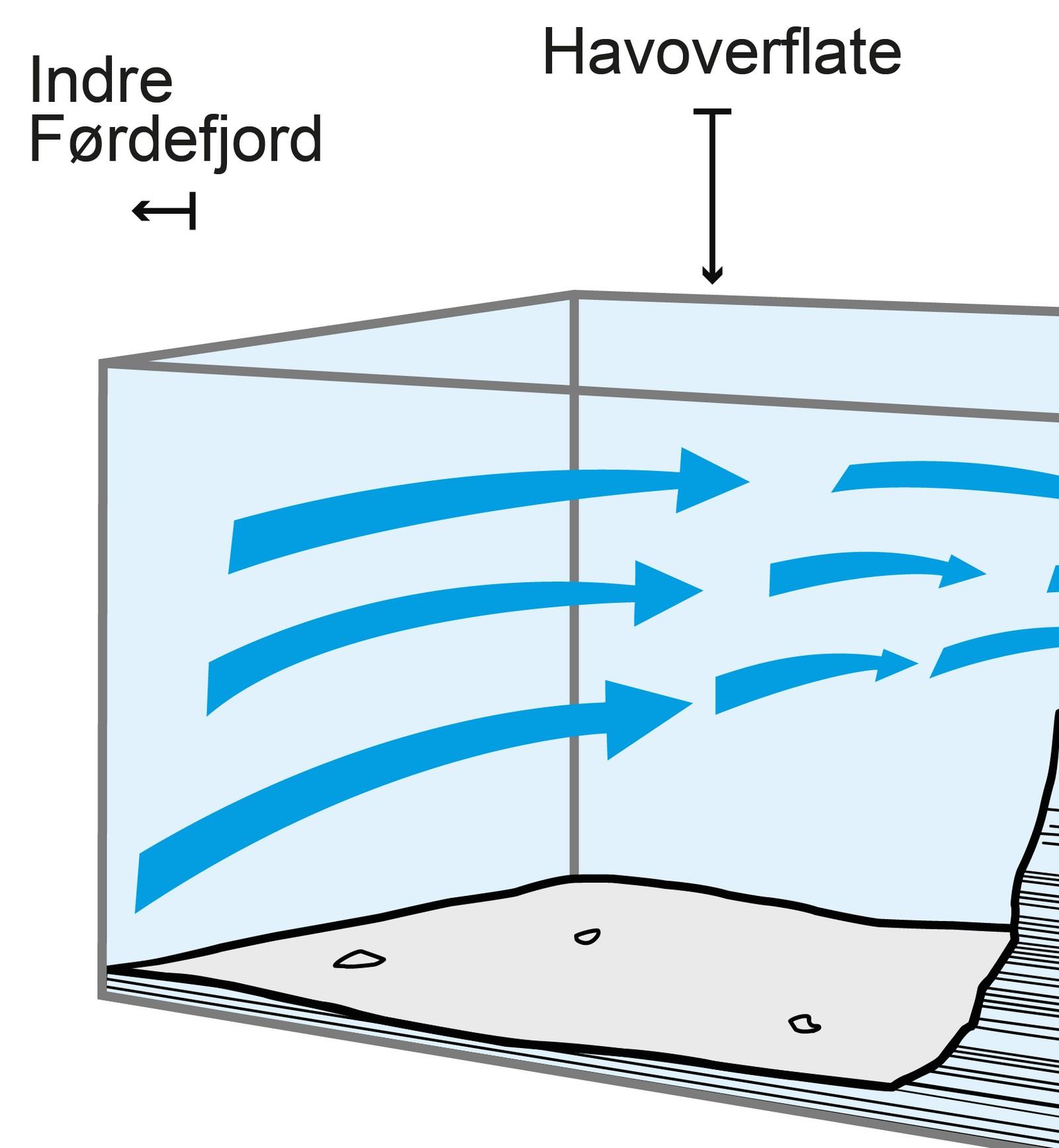 Indre deler av Førdefjorden er forholdsvis dype (opp til 400 meter). Vannstrømmene går i hovedsak i de øvre delene av fjorden, og følger kystlinjen. Strøm som går inn og ut av fjorden må gjennom det trange Ålasundet på veien.