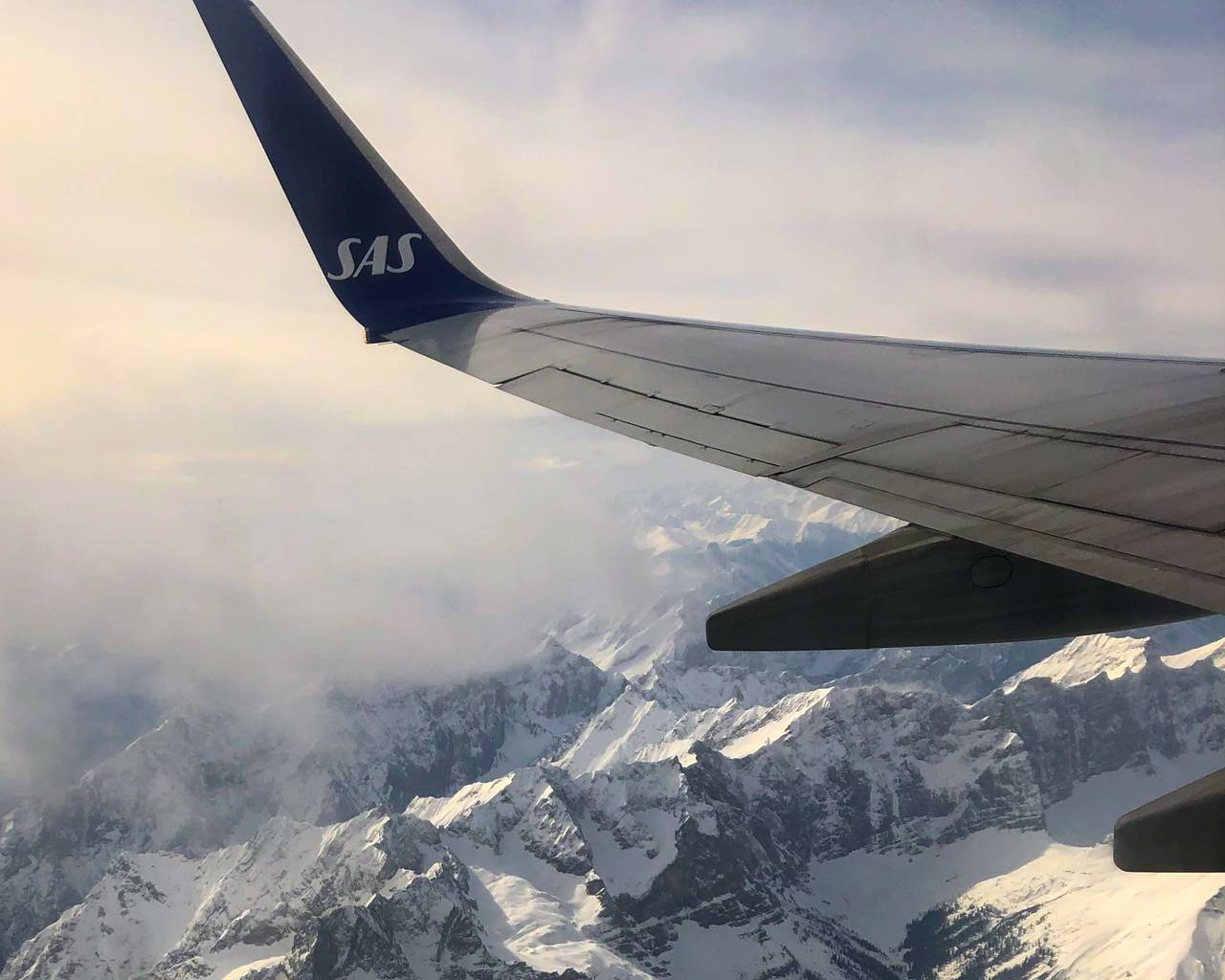 En SAS-vinge med Alpene i bakgrunnen